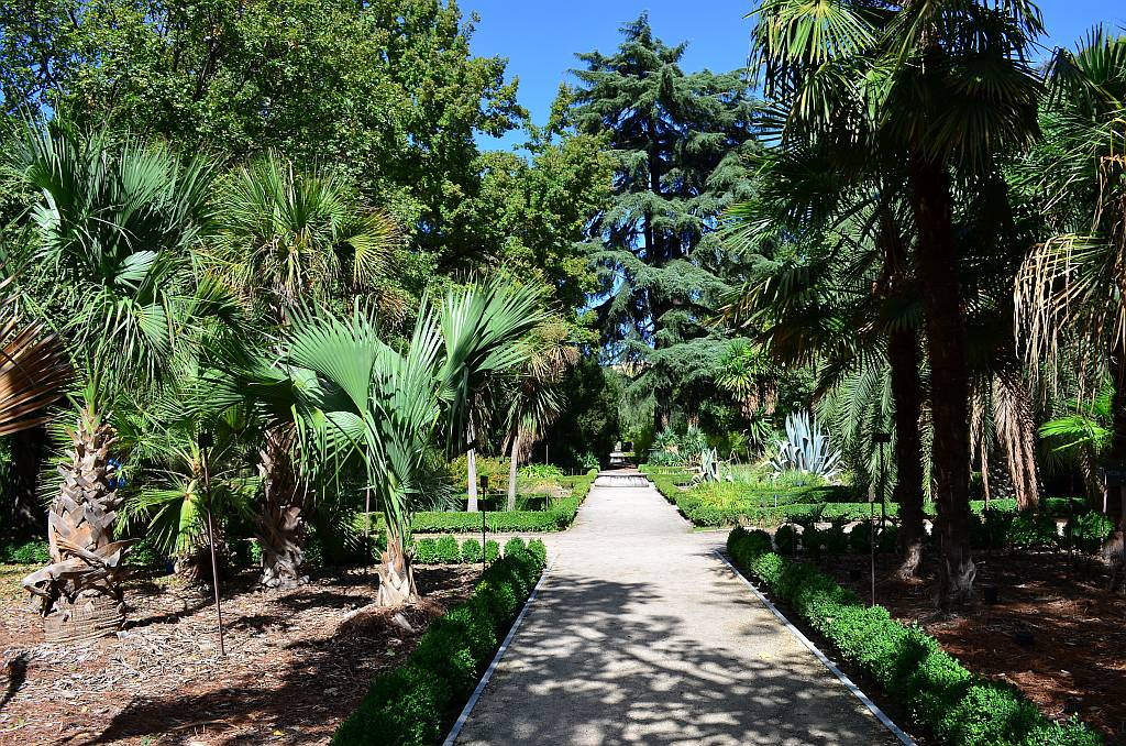 Botanical-Gardens-Madrid-3