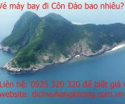 ve may bay di con dao