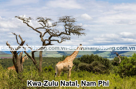 Kwa-Zulu-Natal-Nam-Phi