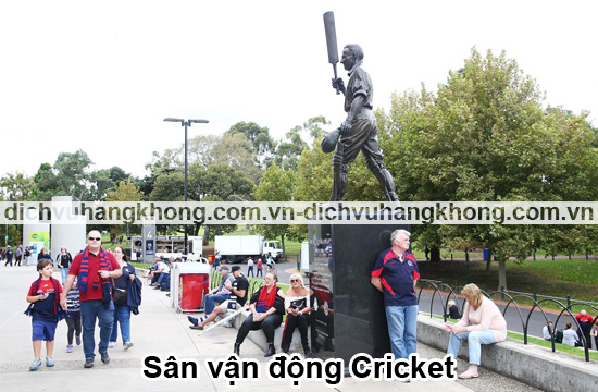 san-van-dong-cricket