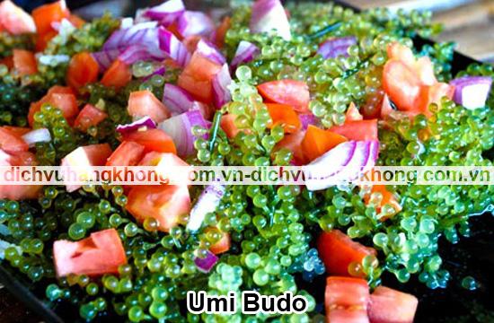 Umi-Budo