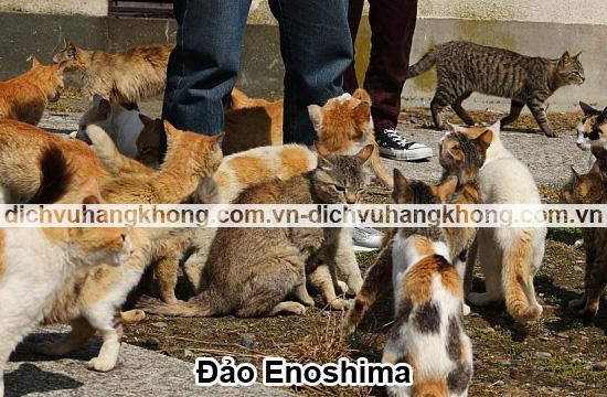 dao-Enoshima