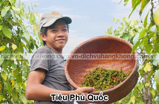 hong-tieu-phu-quoc