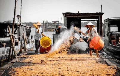 nguoi dan dang phoi tom kho ha tien kien giang Dịch Vụ Hàng Không